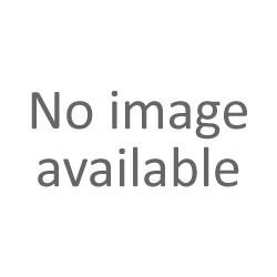 4F spodenki dresowe męskie L18 SKMD001 c.szary