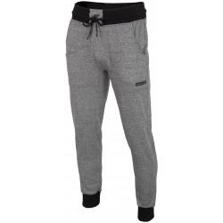 4F spodnie dresowe męskie JOGGER L18 SPMD004